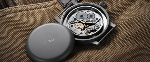 861930 movement view