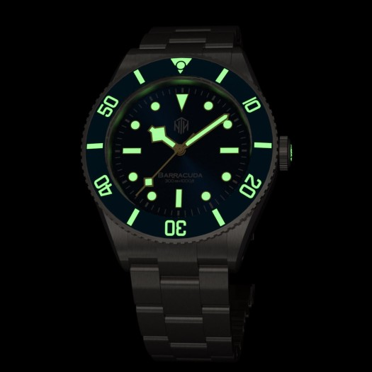 BarracudaBlue Lume 4